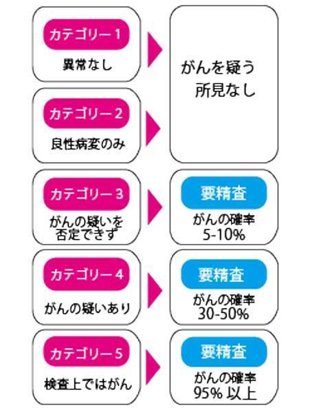 カテゴリー分類.jpg